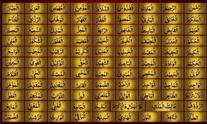allah-vector-arabic-calligraphy